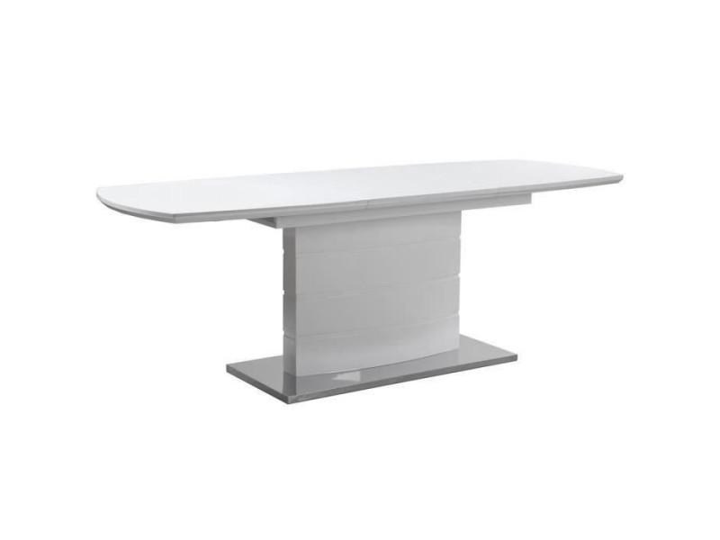 Table de sejour extensible 8/10 personnes - laque blanc - granada XJH200212