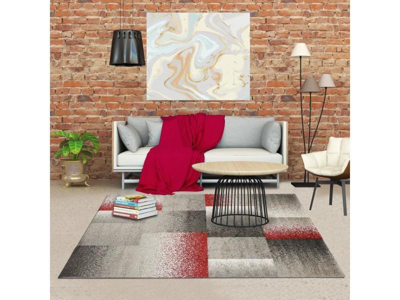 Tapis Pour Salon Derby Gris Beige Rouge 200 X 290 Cm Vente De