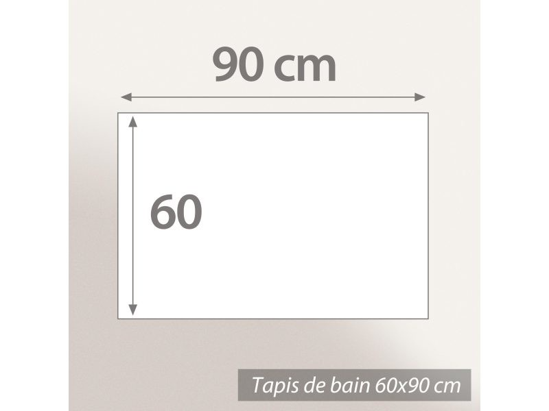 1001KDO POUR LA MAISON Tapis Fond de Douche Galet Transparent