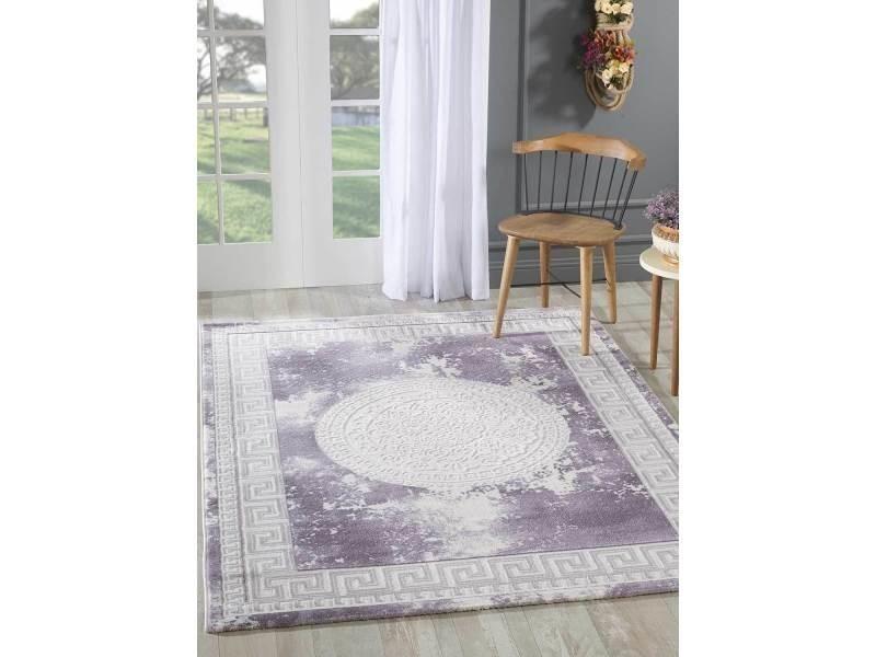 Tapis grand dimensions khy alan violet 80 x 150 cm tapis de ...