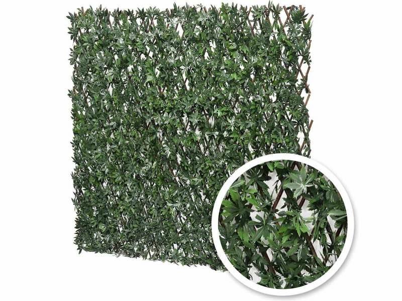 Treillis extensible feuilles de vigne vierge 1 x 2 m - jardideco