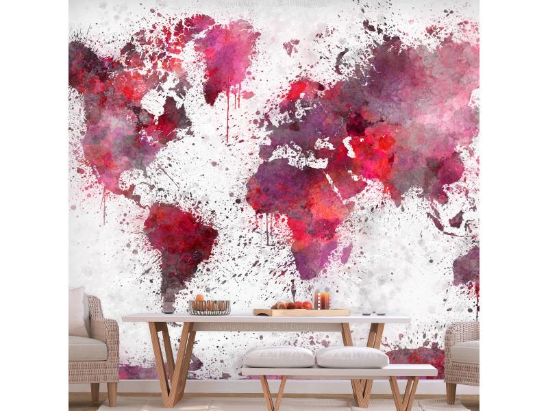 Carte Conforama Papier.250x175 Papier Peint Carte Du Monde Esthetique World Map