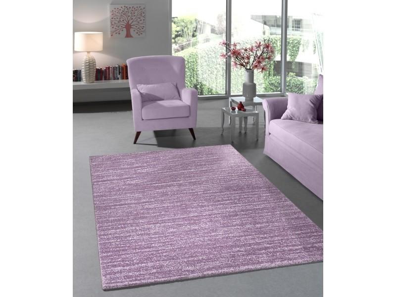 Tapis lisa flocon violet 120x170cm - Vente de Tapis salon et ...