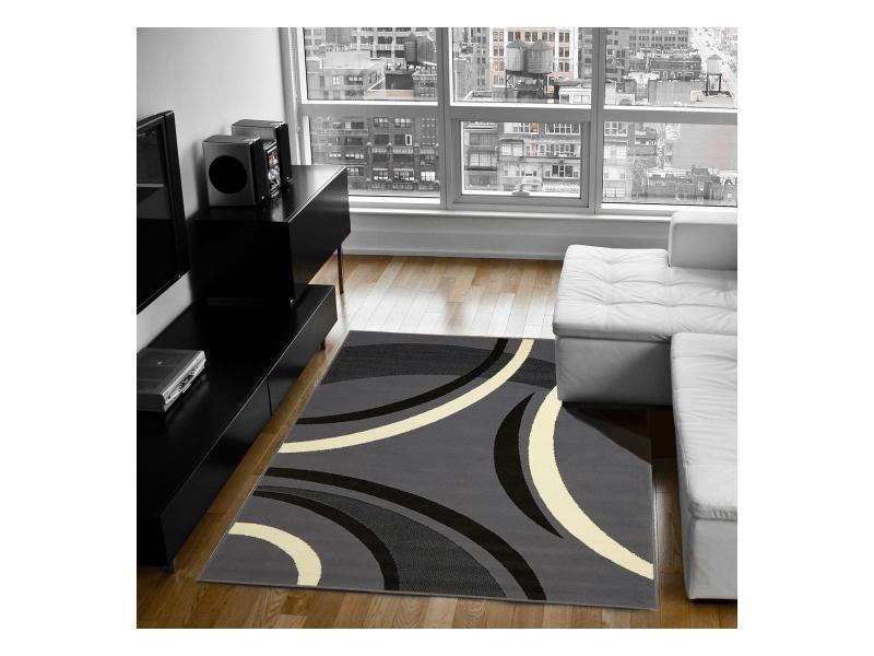 Tapis grand dimensions bc joyle gris 140 x 200 cm tapis de salon moderne design par dezenco - Grand salon moderne ...
