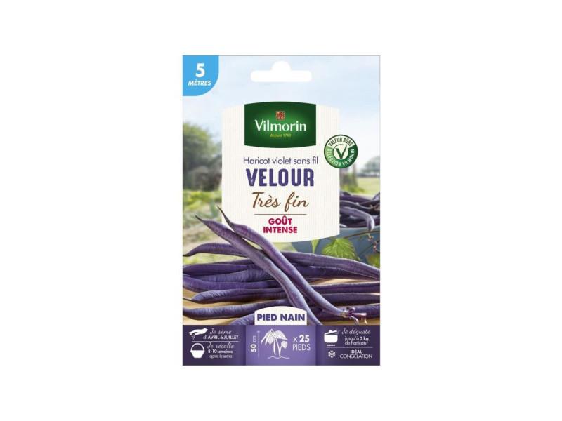 Vilmorin graines de haricot velour gousse violette - 5 m