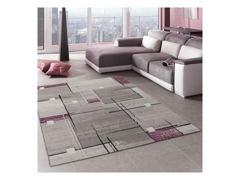 Tapis Grand Dimensions Nova Violet 240 X 340 Cm Tapis De Salon Moderne  Design Par Unamourdetapis