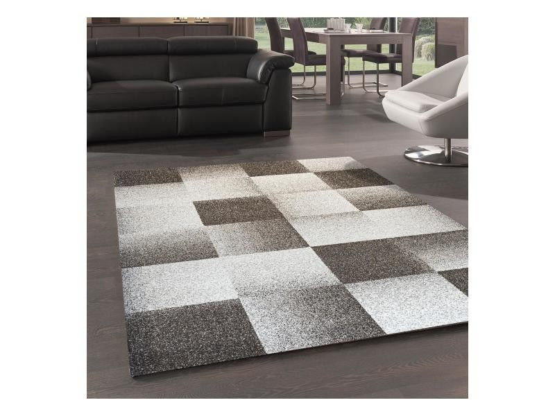 Dezenco 120 x 170 cm tapis chambre tapis moderne chester ...