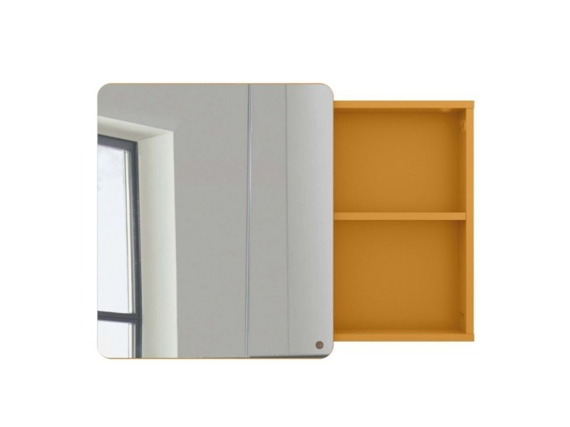 Miroir placard salle de bain 58x80cm en bois atole 9004982029