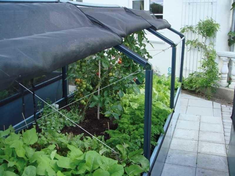 Potager de jardin surélevé de 50cm avec serre 3 modules - Vente de ...