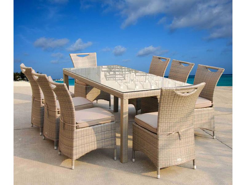 Salle à manger de jardin table 200 x 90 cm + 8 chaises en ...